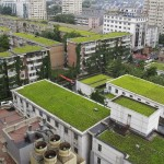 green-roofs_1439194i